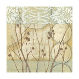 Willow and Lace I Giclee Print by Jennifer Goldberger