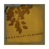 Waxing Crescent II Premium Giclee Print by Ken Hurd