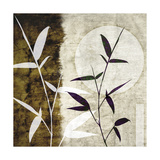 Bamboo Moon I Prints by Christine Zalewski