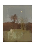 Misty II Premium Giclee Print by Ken Hurd
