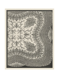 Vintage Lace IV Print by J.B. Waring