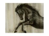 Dynamic Stallion II Posters by Ethan Harper