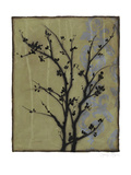 Branch in Silhouette III Stretched Canvas Print by Jennifer Goldberger