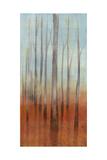 Birch Forest II Prints by Jennifer Goldberger