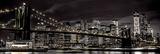 Assaf Frank New York Poster