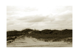 Ocracoke Dune Study I Poster by Jason Johnson