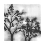 Silvery Trees I Posters by Jennifer Goldberger