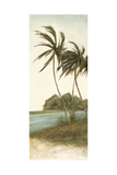 Trish's Palms II Prints by Chariklia Zarris