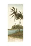 Trish's Palms II Prints by Chariklia Zarris