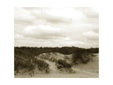 Ocracoke Dune Study II Prints by Jason Johnson