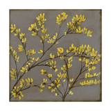 Forsythia I Kunst av Jennifer Goldberger