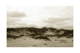 Ocracoke Dune Study III Print by Jason Johnson