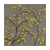 Forsythia II Posters by Jennifer Goldberger