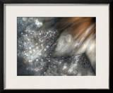 Lentejuelas Framed Giclee Print by Ursula Abresch