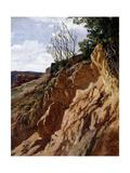 Tajo Colorado (Río Piedra De Aragón), Ca. 1872 Giclee Print by Carlos de Haes