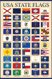 USA 50 State Flags Chart Education Poster Posters