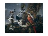 Bird Concert, 1661 Giclée-Druck von Jan Fyt