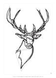 Royal Stag Deer Affiche par Antoine Tesquier Tedeschi