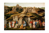 Adoration of the Kings, C. 1480 Giclee Print by Filippino Lippi