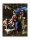 The Holy Family with an Oak Tree, 1518-1520 Reproduction procédé giclée par  Raphael