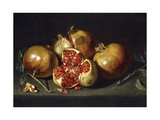 Pomegranates Giclee Print by Antonio Ponce