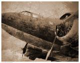 Antique Plane I Prints