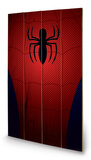 Ultimate Spider-Man - Spider-Man Torso Wood Sign Treskilt