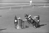 Horse Riding Competition Photographic Print