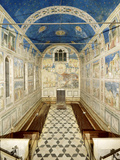 Fresco Cycle in the Scrovegni Chapel Photographic Print by  Giotto