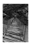 A Guide on a Wooden Bridge Photographic Print
