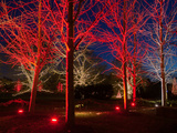 Longwood Gardens, in Pennsylvania, Showcases its Annual Holiday Lights and Decorations Stampa fotografica di Eric Kruszewski