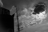 A Silhouetted Pigeon, Columbidae Species, Perched Atop a Structure Near a Ship's Mast Photographic Print by Eduardo Rubiano