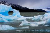 Icebergs Float in Lago Grey in Torres Del Paine National Park Fotografisk tryk af Mattias Klum