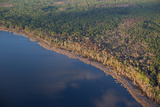 An Aerial View of Ocean Pond in the Osceola National Forest Photographic Print by Carlton Ward