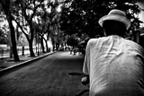 A Chinese Man Driving a Rickshaw on a Tree-Lined Road in the Hutongs Photographic Print by Jonathan Irish
