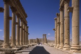 Great Colonnade in the Roman Ruins of Palmyra, Syria Posters by Andrea Jemolo
