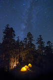 Tents Glow from their Inhabitants Head Torches in a Camp Perched Among Trees Photographic Print by Alex Treadway