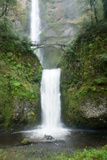 Multnomah Falls, Oregon Photographic Print by Vickie Lewis