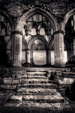 Abbey Steps Photographic Print by David Bracher