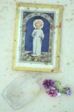 Angelic Pelargonium Photographic Print by Den Reader