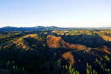 Dawn Crowns Deforested Hilltops Surrounded by Pine Plantations Photographic Print by Jason Edwards