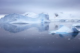 Blue Icebergs Floating in Still Water Near a Mountainous Shore Photographic Print by Ira Meyer