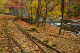 Autumn Leaves Cover Railroad Tracks at the Dupont Powder Mill Photographic Print by Michael Melford