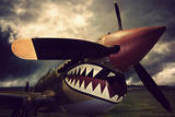 Curtiss Kittyhawk Photographic Print by David Bracher