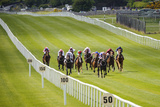 Horse Racing at the Curragh in Ireland Photographic Print by Chris Hill
