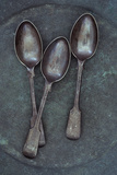 Silver Teaspoons Photographic Print by Den Reader