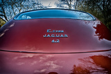 E-Type Jaguar Photographic Print by Tim Kahane