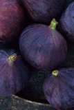 Purple Figs Ii Photographic Print by Den Reader