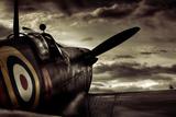 David Bracher - Reach for the Sky Fotografická reprodukce