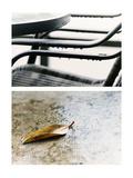 Broken Hearted Photographic Print by Henriette Lund Mackey